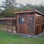 stationary backyard chicken coop